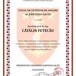 diploma Consiliu Fetecau_page-0001